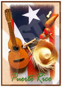 PUERTO RICO FLAG INSTRUMENTS CAR STICKERS