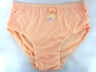 Lady's Cotton UNDERWEAR - Color Embroidered - #L470 #L470CS/Q