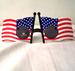 AMERICAN FLAG PARTY GLASSE'S