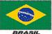 Apparel T-shirt Glitter Country FLAGs Printed:''Brasil''