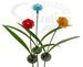 A pack of Red, Blue Yellow Clear Glass Flower Solar Garden Light