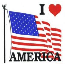 USA I Love America Vinyl Auto Window / Bumper DECALs