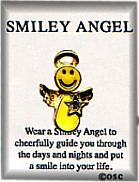 Smiley Angel BIRTHSTONE Star Pin