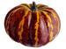 5''Hx6''D Weighted Pumpkin  COFFEE Yellow (BULK)